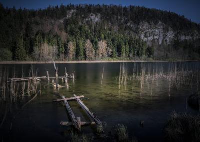 Lac 36